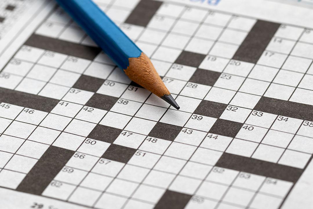 Crossword Fun